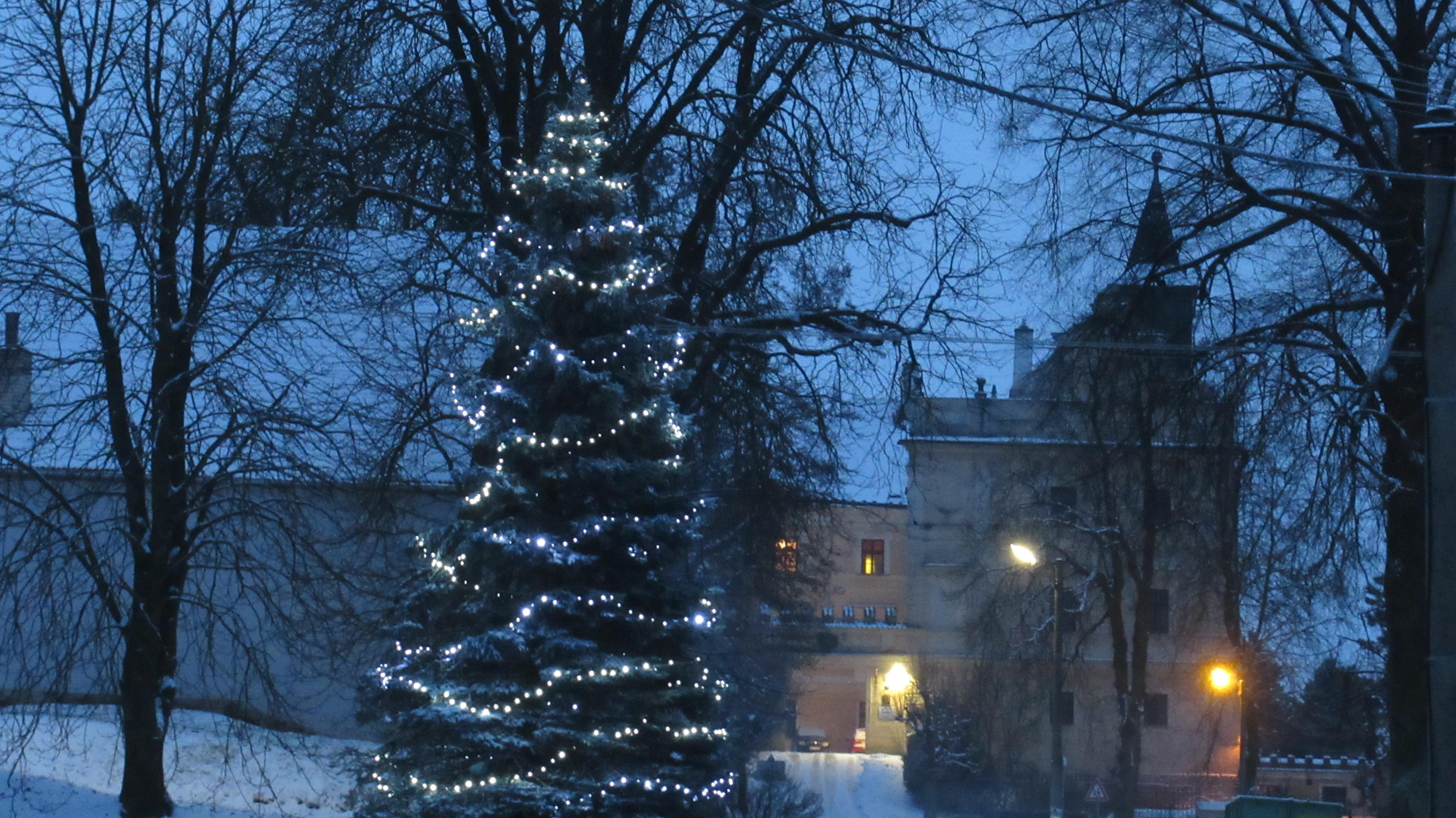 vánoční strom v Radeníně
